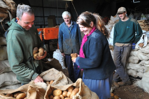 Choosing the perfect Spuds at the Dunns farm, photos by Anneke
